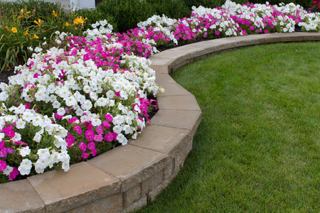 one foot high stone flower bed wall going along grass